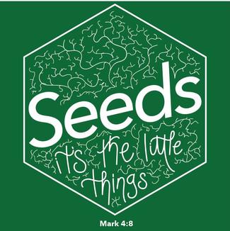 Seeds 2019-21