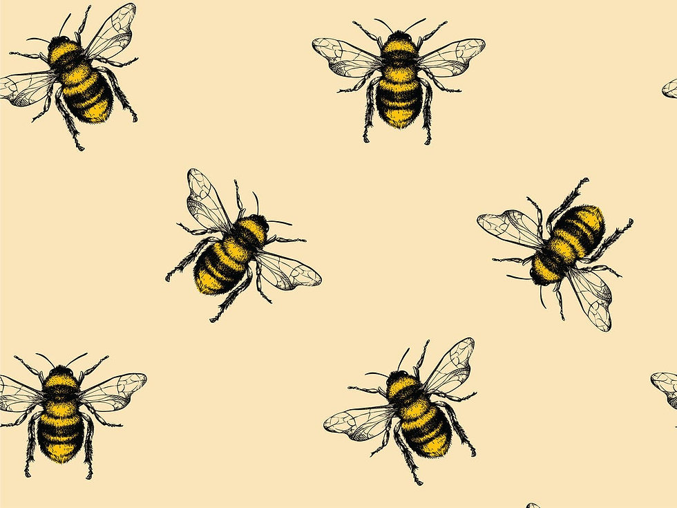 world-bee-day-2020-indybest-help-protect