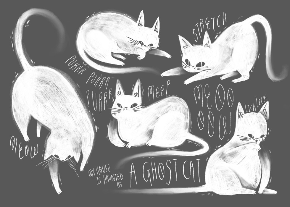Children's Book: Ghost Cat