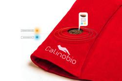 Calinobio, tapis
