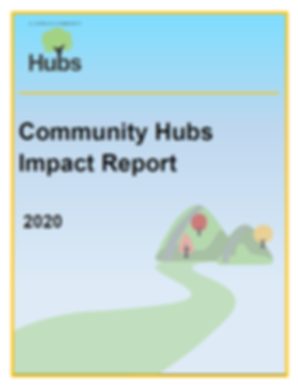 2020 Hubs profile report.png