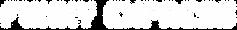 logo V0.2 FE 2021.png