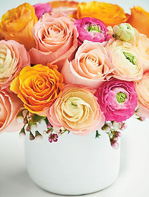 Flowers-Sarah-gunn.jpeg