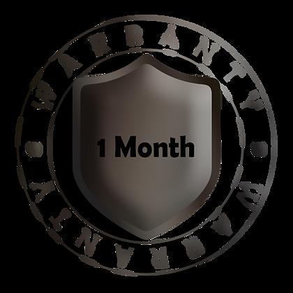 1 Month Warranty