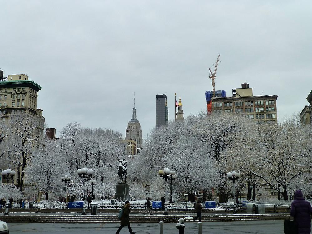 雪の日の午後。木の枝に降った雪が花のようでとても綺麗。