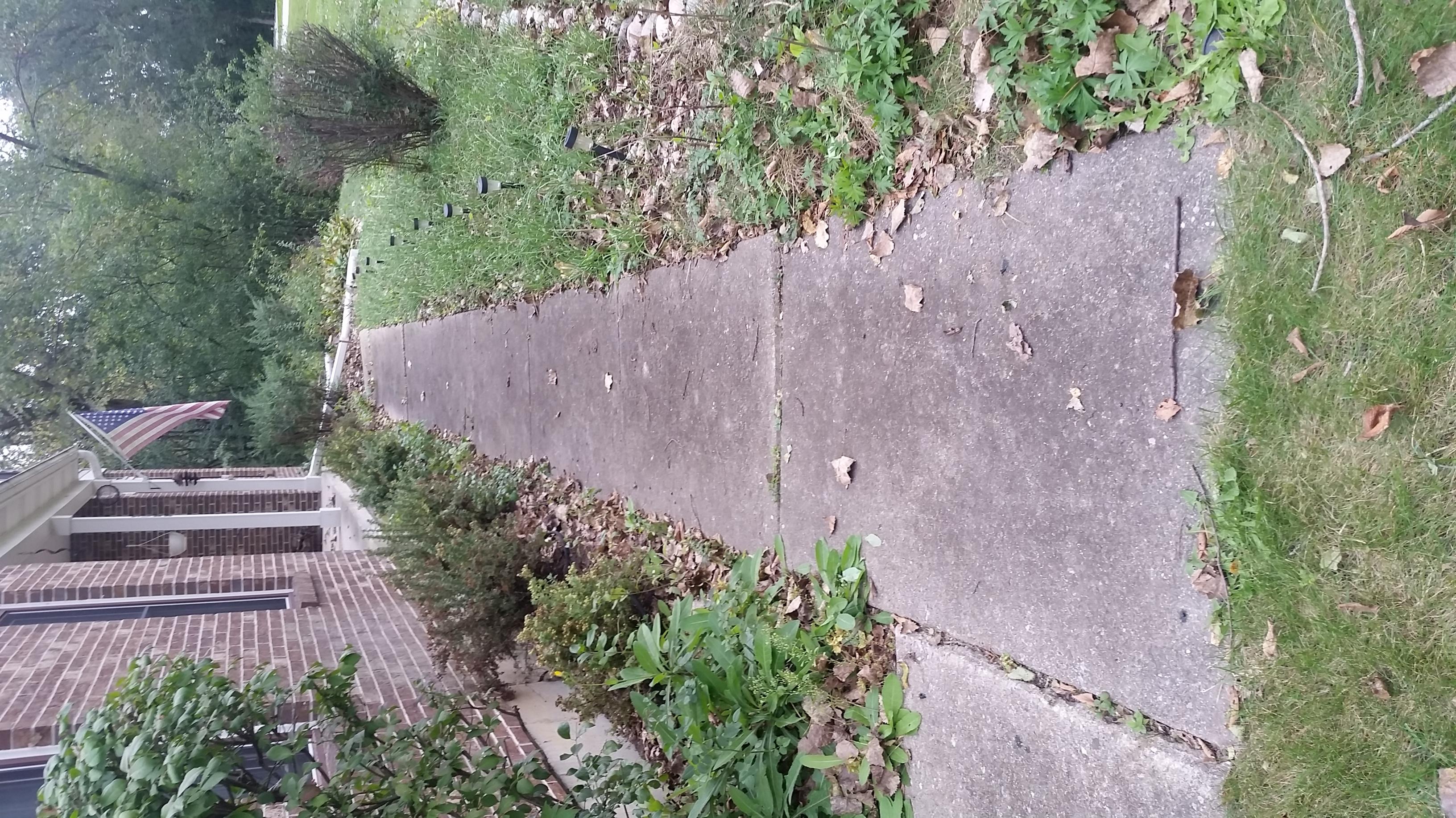 Old Walkway