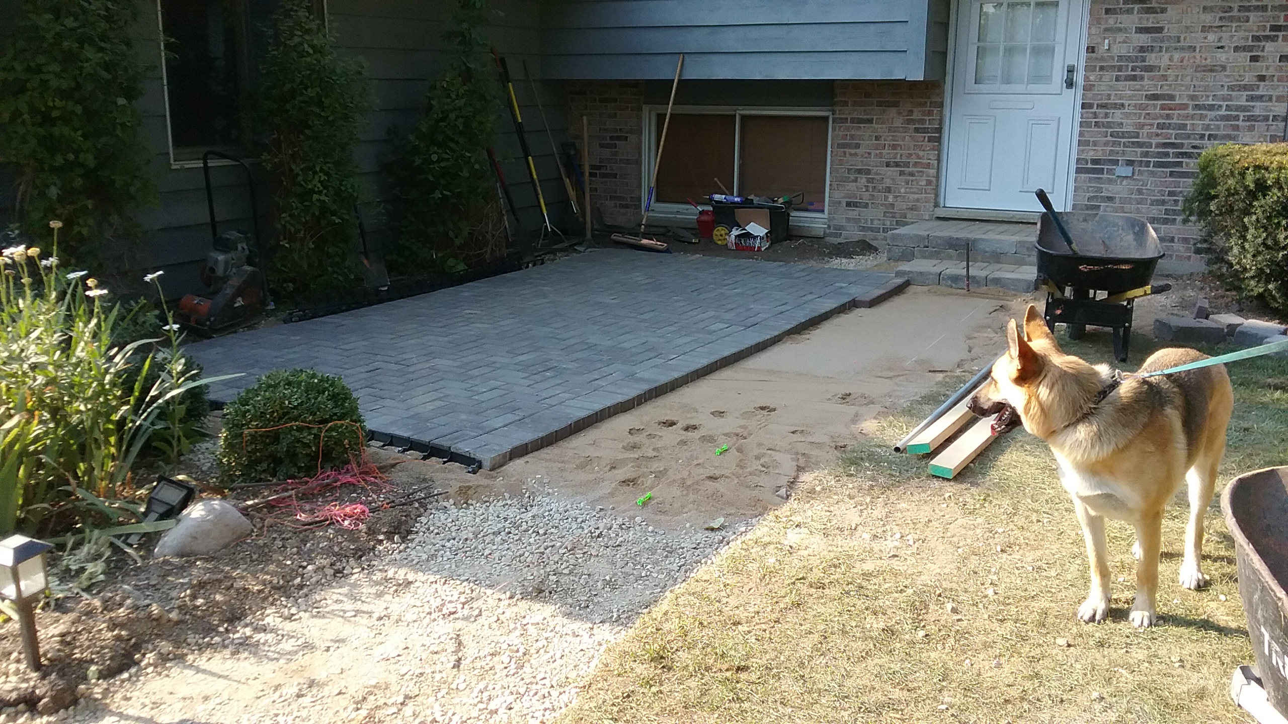 Patio Coming Along