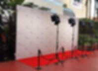 Step and repeat backdrop.jpg