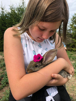 Mały Farmer – Obóz dla dzieci
