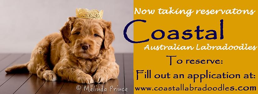 Coastal WALA Ad.6.1.21.png