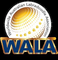 Worldwide Australian labradoodle Association