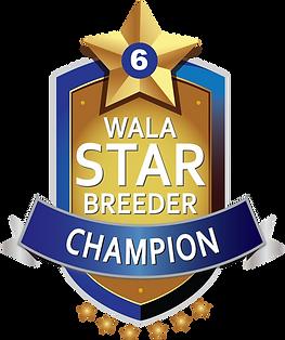 Star Logo.Champion Final.png