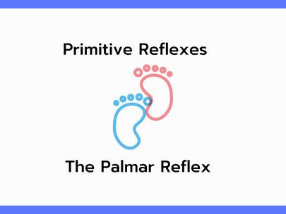 The Palmar Reflex