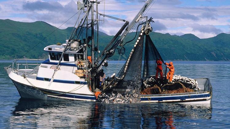 La spinosa questione della pesca che rischia di compromettere il raggiungimento di un accordo tra UK e UE