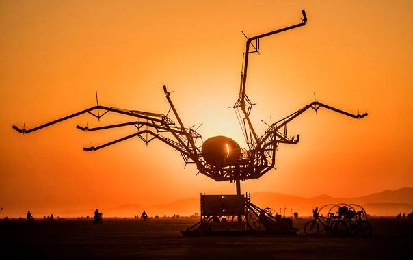 Spider Sunrise
