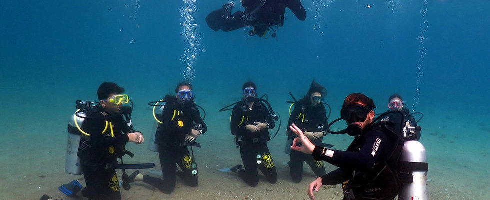 PADI Open Water Course (English)