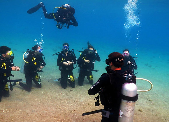 Upgrade from Scuba Diver to Open Water Diver in Eilat