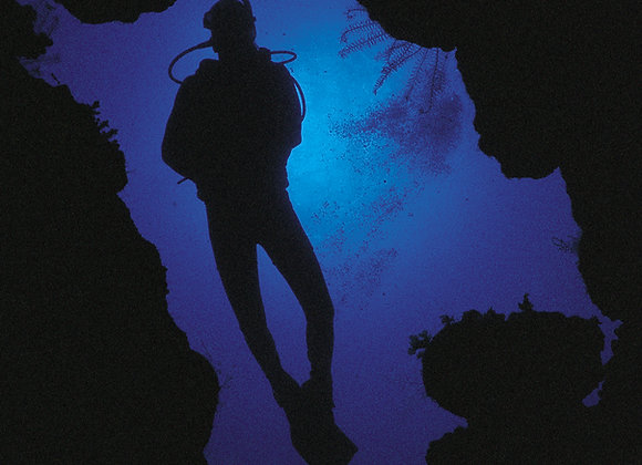 Group Night Dive
