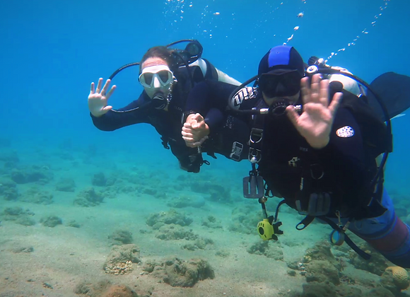 Introductory Dive 30 Minutes
