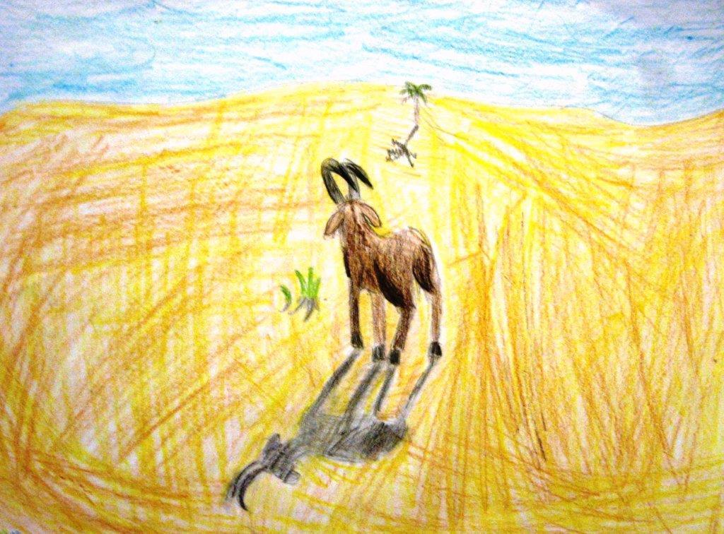 Pencil, goat, age 9