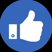 carmax icon.png