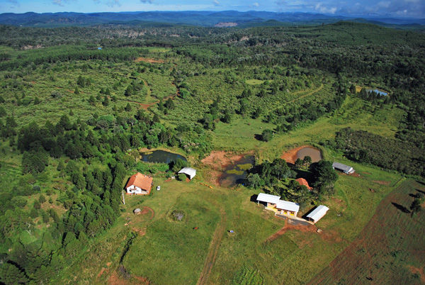 Farm Bartholet im brasilianischen Urwald