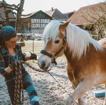 individuelles Training für dich und dein Pferd