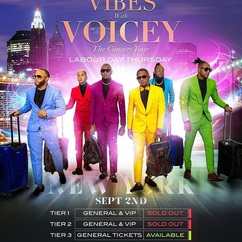 Vibes With Voicey Tour (NYC)
