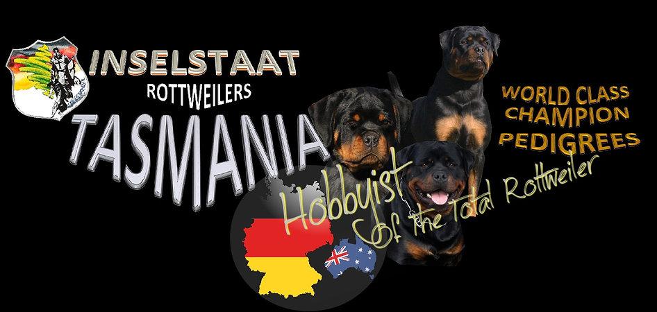 German Rottweilers Australia