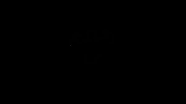 Logo_strongerbodies_black_png.png