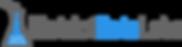 DDL_logo-1.png