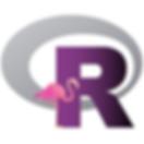 R-Ladies_Miami_logo_v1_4x6.png
