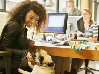 To Bring or Not to Bring: The Pros and Cons of Bringing Dogs to Work
