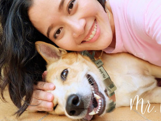 Mr. Licks Pets Gives Away DISCOUNT for Taking A Selfie With Your Pooch