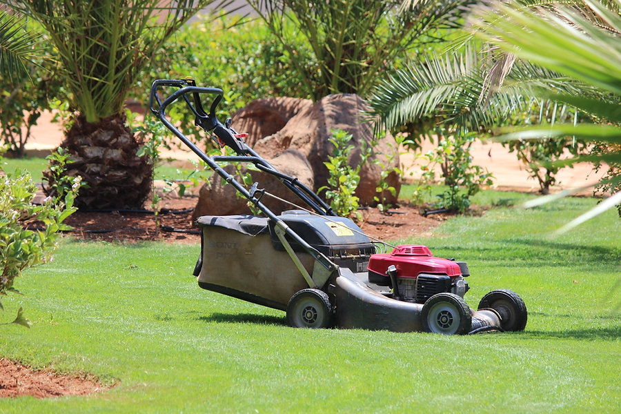 Home maintenance projects - landscaping and mowing