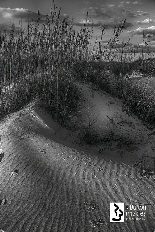dune, matted for framing