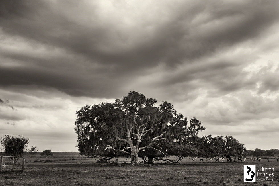 storm over partin ranch