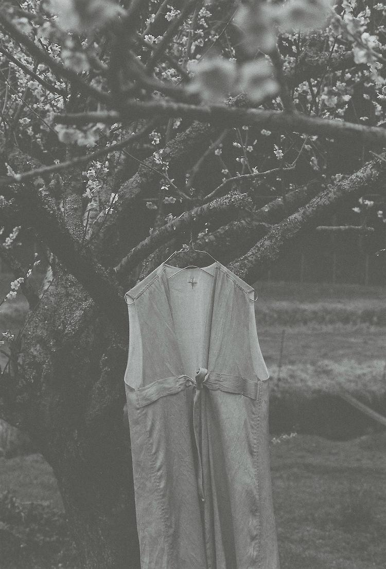 iai_ens_iaiの衣の役割