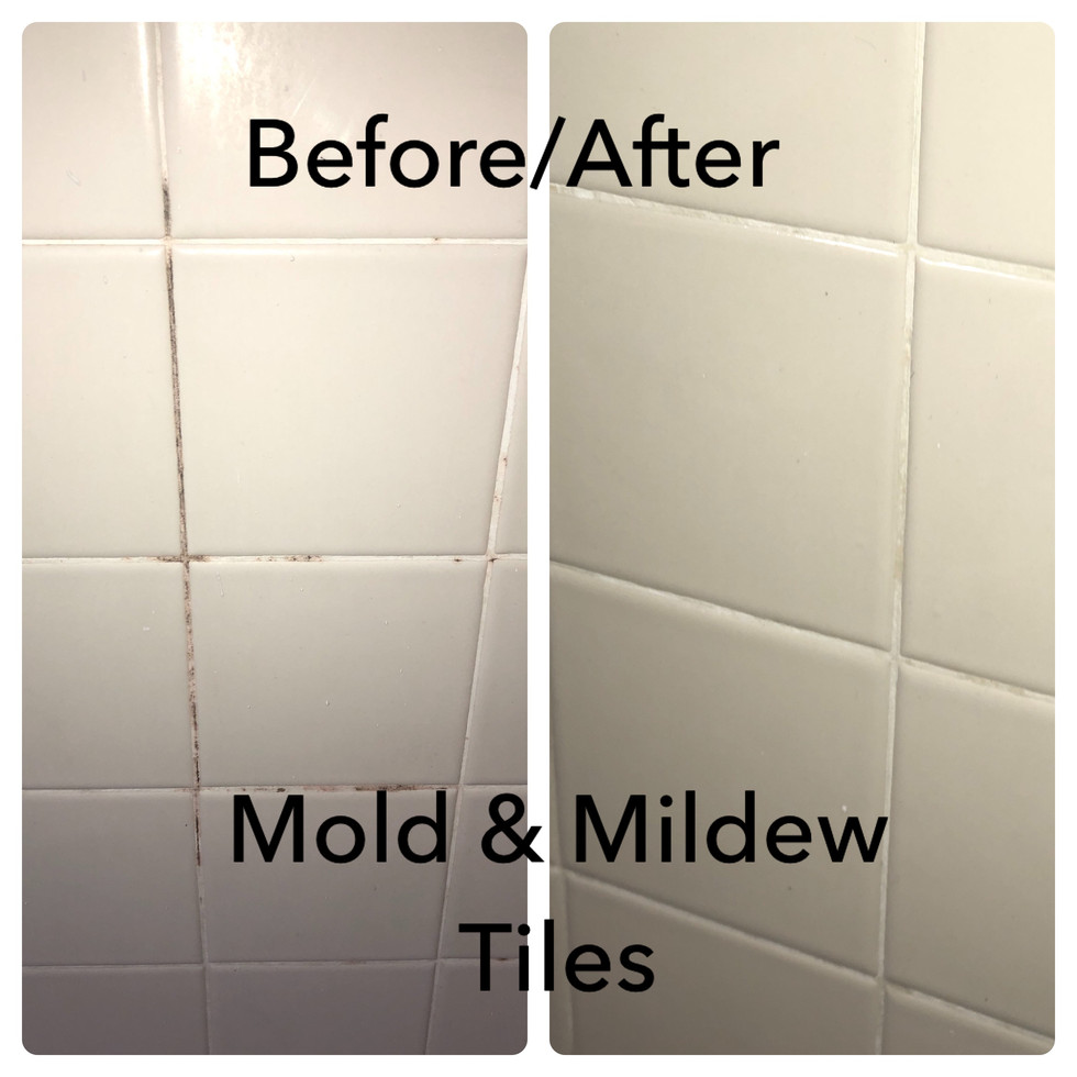 Mold and Mildew on tiles and grout before and after