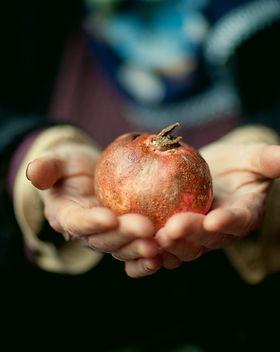 Doğu Karadeniz Meyve Mirası ve Sürdürülebilir Yaşamın Kayıt Altına Alınması_ Projesi.jpg