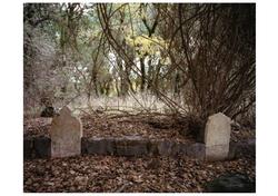 Mansura's cemetery © MS