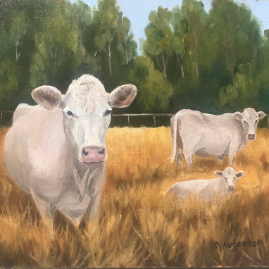 Oil painting by Donetta Anderson