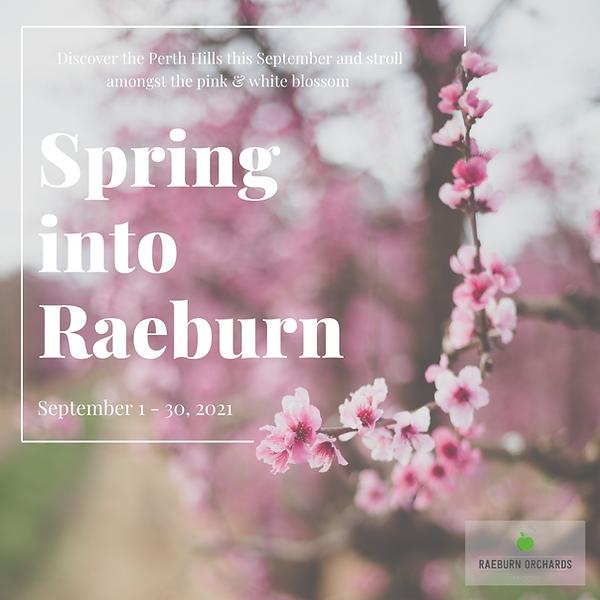 Spring into raeburn.png