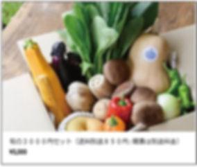 野菜配達3.jpg