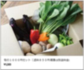 野菜配達1.jpg