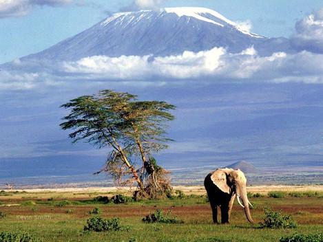 Kouzelná Tanzanie