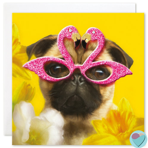 Pug Birthday Card - BLANK for any Occasion