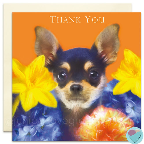Thank You Card Chihuahua Puppy UK 'THANK YOU'