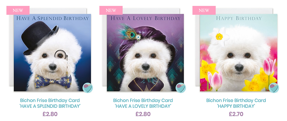 Bichon Frise Dog Birthday cards for men and women boys and girls