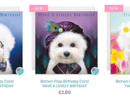 NEW Bichon Frise birthday cards by Juniperlove greetings UK